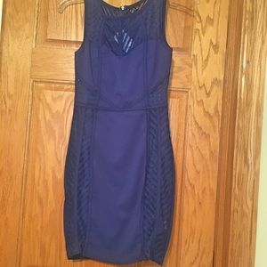 Royal Blue Windsor Dress (Small, Never Worn)